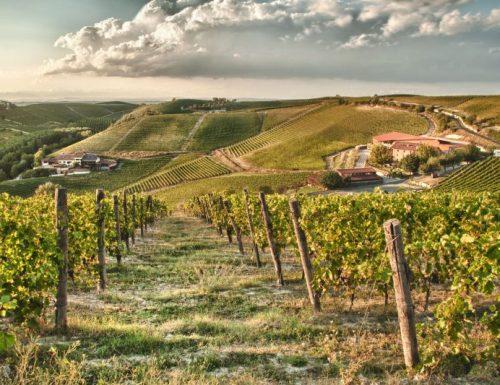 Mondodelvino presenta Ricossa. Vini classici piemontesi, Barbera e Brachetto in abbinamento alla ristorazione stellata de Il Centro di Priocca.